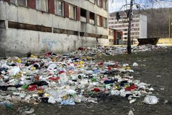 Lunik IX. Vlani odtiaľ vyviezli okolo 1 000 ton odpadkov, takmer 80 000 eur za to zaplatilo mesto.