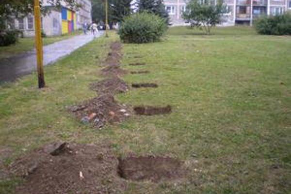 Výbeh pre psy zostane v spomínanej lokalite, no posunie sa ďalej od obytných blokov smerom k ceste.