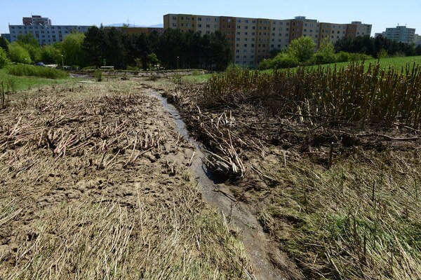 Pole nad Sídliskom III. Voda z neho splavila bahno, ktoré upchalo kanalizačné vpusty.