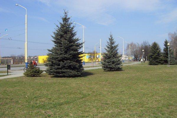 Venčovisko a cvičisko malo byť v tomto parku na Arm. gen. Svobodu, ale nebude.