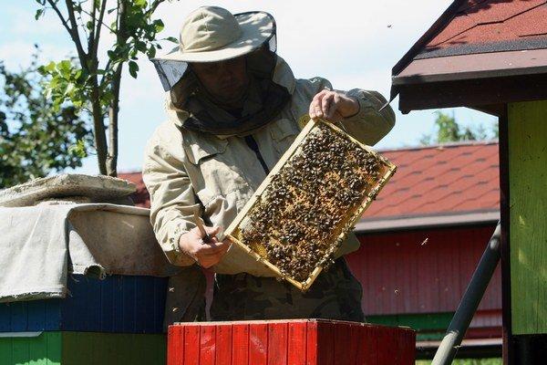 Včelári. Hovoria, že medníky nie sú plné.
