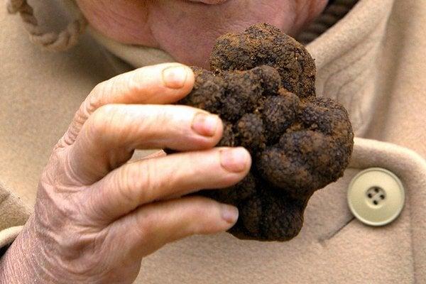 Hľuzovka patrí medzi unikátne huby.