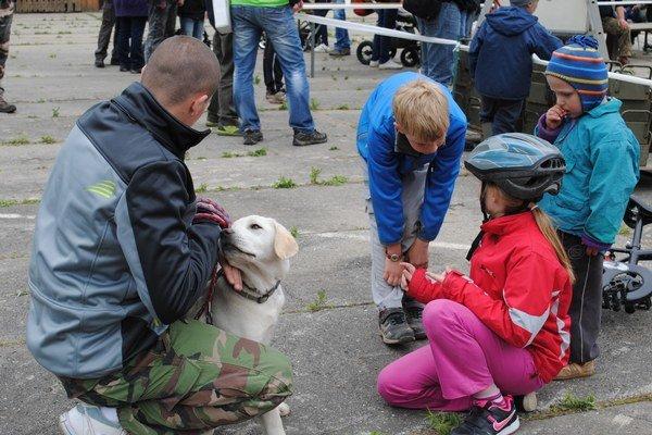 Prešovskí havkáči. Bojujú nielen za dôstojný útulok, ale aj za výbehy pre psov.