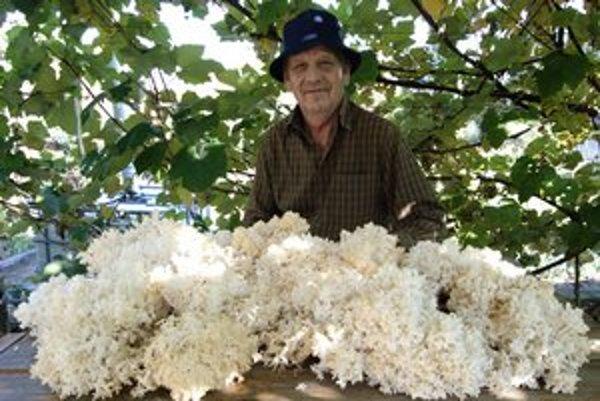 Jozef Grejták s koralovcom bukovým. Túto hubu našiel prvýkrát v živote.
