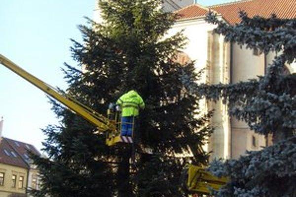 Stromček z centra Prešova odvezú medzi poslednými.