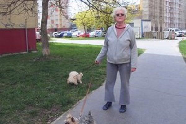 Chovatelia psov. Nepočujúci musia úradu nahlásiť, že ich štvornohý priateľ je signalizačným psom.