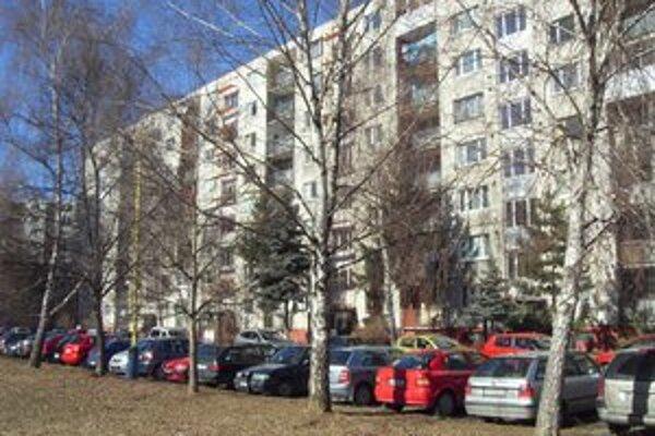 Prostějovská ulica. Staré a vysoké brezy ľuďom prekážajú.