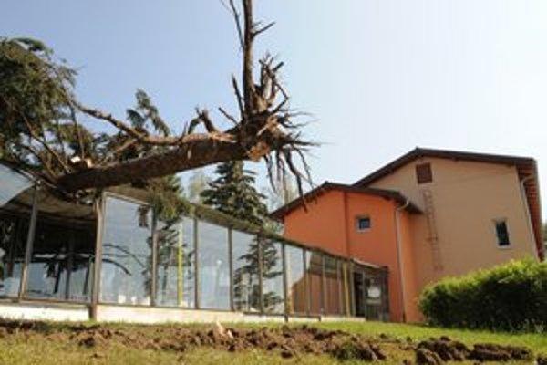 Poškodená škola vo Veľkom Šariši.