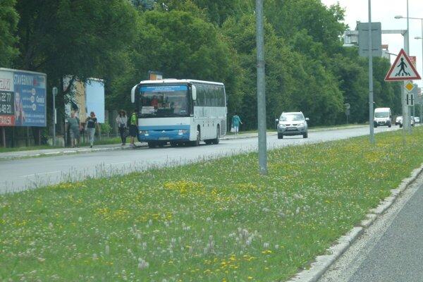 Zastávka na Severe pre prímestské a diaľkové autobusy je bez prístrešku.