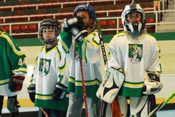 Dotáciu dostali aj mladí prievidzskí hokejisti.