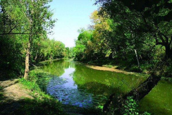 Chránená prírodná oblasť (CHKO) Latorica.