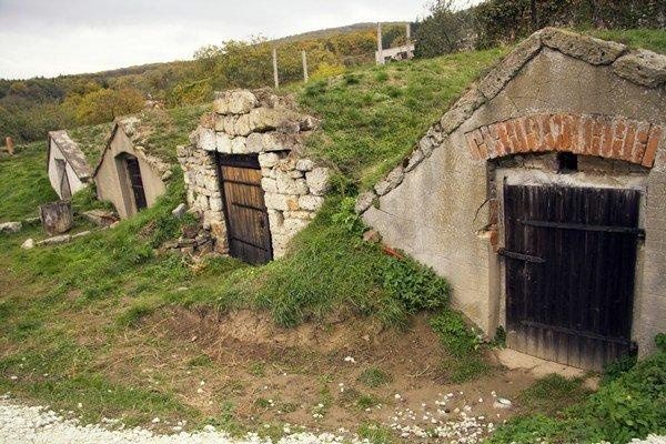 Portály tokajských pivníc vo Veľkej Tŕni. Pred niekoľkými rokmi boli vpôvodnom stave. Dnes sú viaceré vynovené.