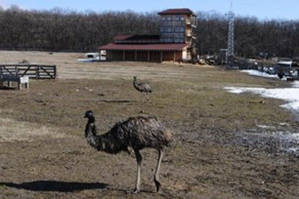 Hobbyzoo Veľaty. Po Varehovom zatknutí je pre verejnosť zatvorená. Zamestnanci sa o zvieratá starajú naďalej.