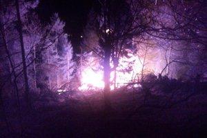 Požiar vypukol za tmy, zasiahol aj mladé stromčeky.