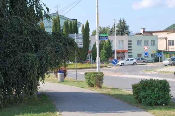 Nezbedný konár. O ošetrenie stromov sa má postarať mesto.