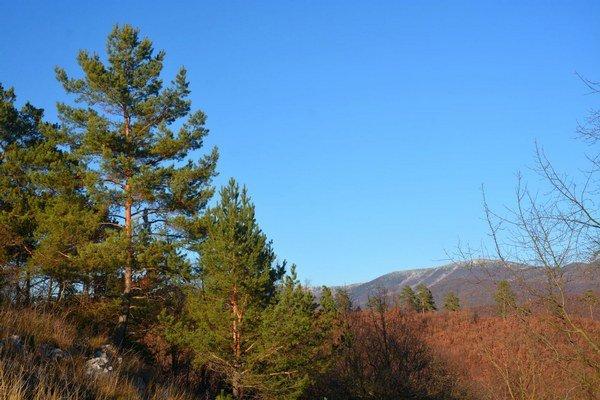 Valentínska túra. Deň zaľúbencov sa vKrásnohorskom Podhradí rozhodli spestriť túrou.
