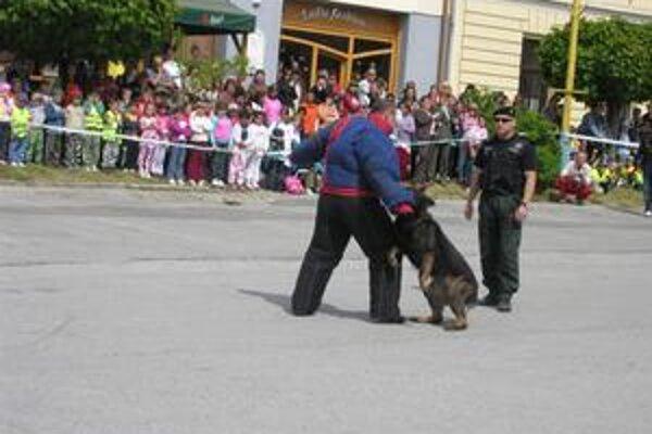 Zásah. Fingovaný útok psa pri zásahovej akcii policajtov zatajil dych mnohým divákom.