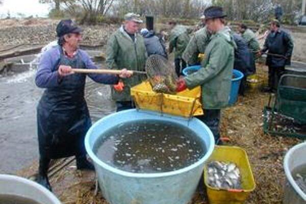 Rybolov. Bude tiež jednou zo súťaží v rámci Hrušovských dní.