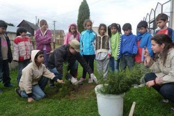 Sadenie so školákmi. Deti dvoch základných škôl v Bardejove sa zapojili do výukových hodín starostlivosti o stromčeky.
