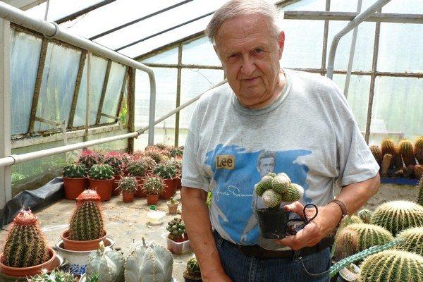 Ján Vlček. Stále aktívny lekár zbiera kaktusy a sukulenty už vyše 50 rokov. V jeho zbierke sú aj vzácne druhy ako je Parodia gibulóza z Brazílie.