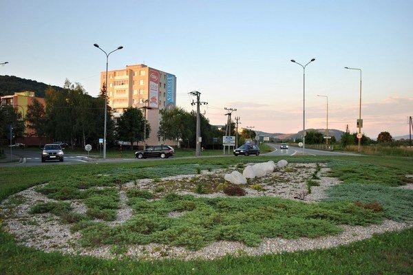 Kruháč na Ševčenkovej mesto prisľúbilo na budúci rok zahrnúť do výsadby.