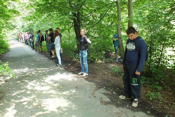 Priatelia nezvestného Alexandra vytvorili pri hľadaní v lese rojnicu.