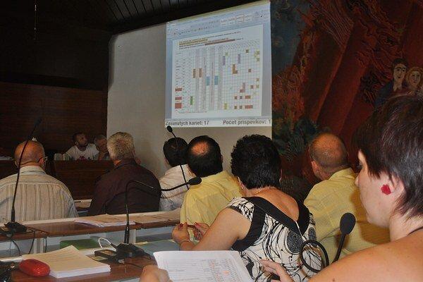 Prehľad. Daniela Galandová (vpravo) vypracovala prehľad účasti poslancov v komisiách pre verejné obstarávanie.