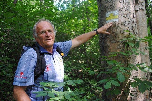 Značkár Michal Kirschner. Sťažuje sa, že lesníci niektoré označkované stromy popri turistických chodníkoch vyrúbu.