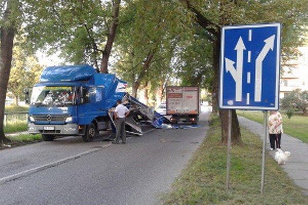 Kamión sa nedostal cez nízke konáre stromov pri ceste.