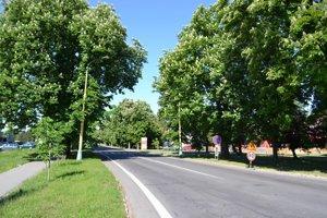 Gaštanová aleja zdobí jednu zhlavných ciest. Poškodené stromy sa vedenie mesta rozhodlo vyrúbať.