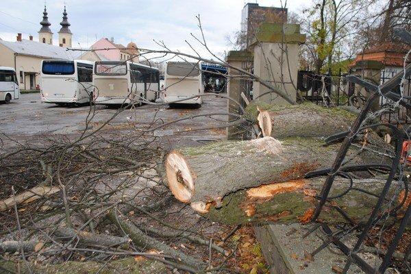 Padajúci strom. Poškodil oplotenie múzea a dopadol na chodník.  Vedenie múzea dalo zmonitorovať stav ostatných stromov. Nebezpečné konáre a stromy odstránia.