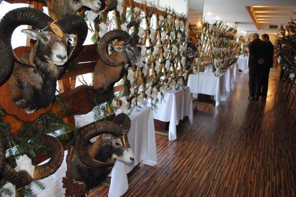 Zemplínske poľovnícke dni. Návštevníci podujatia mohli obdivovať viac ako dvetisíc trofejí poľovnej zveri.