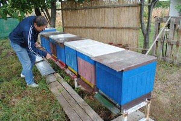 Včelári v jeseni pripravujú svoje včely na dlhú zimu.