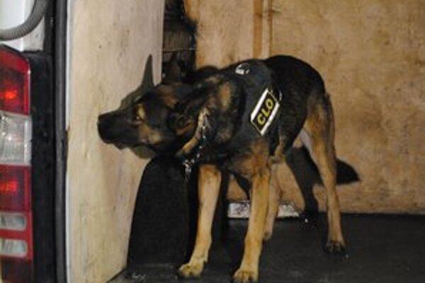 Služobné psy odhalili pašované cigarety ukryté v mikrobuse a v plynovej nádrži osobného auta.