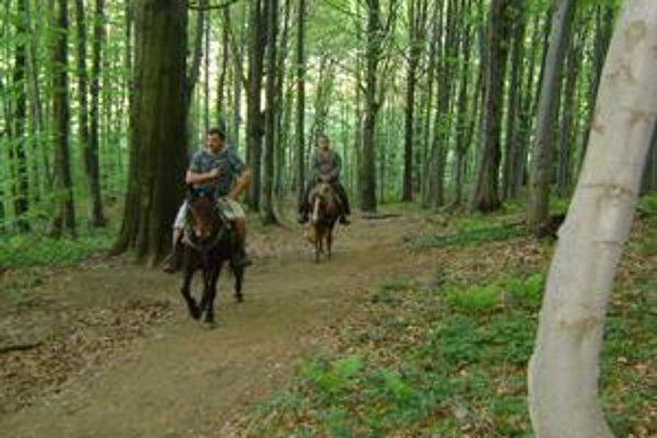 Jazda na koňoch. Okrem klasických turistov môžete v okolí Morského oka natrafiť aj na jazdcov na koňoch.