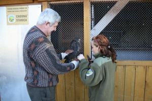 Zoologička a veterinár. Zuzana Argalášová a Gabriel Dudáš vypúšťajú po ošetrení myšiaka, ktorý mal po kolízii s autom narazené krídlo.