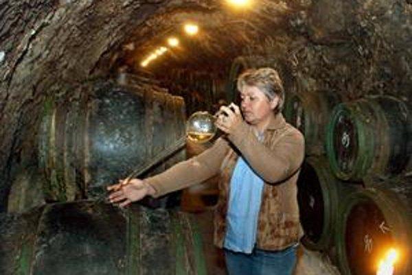 Tokajská oblasť má na Slovensku 907 hektárov. K viniciam patria rozľahlé pivnice.