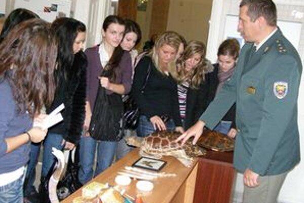 Návštevníci výstavy si mohli prezrieť preparované korytnačky, výrobky z hadej a krokodílej kože.