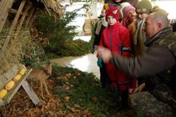 Les v kultúrnom dome Poľovníci premenili kultúrny dom na les. Deti obdivovali zvieratá, kŕmidlá pre zver, ba aj naozajstný potôčik s divými kačicami...