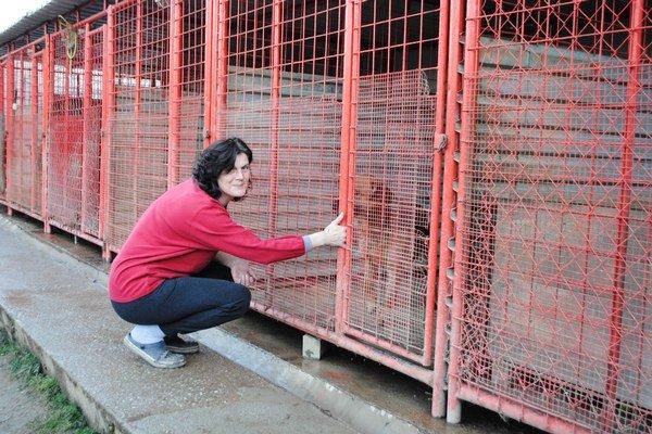 Silvia Valkošáková. Vsúčasnosti sa stará otakmer pol stovky psov.