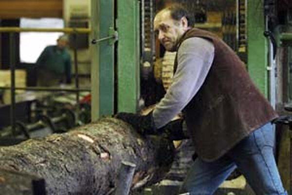Rakúska drevárenská firma sa rozhodla, že v Levoči neinvestuje okolo jednej miliardy korún, lebo nenašla v regióne dodávateľov dreva.