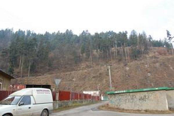 Výrub. V marci minulého roka bol potrebný z bezpečnostného hľadiska výrob stromov na Lorencovej ulici. Celkovo vlani lesy vyťažili o 500 kubíkov drevnej hmoty menej.