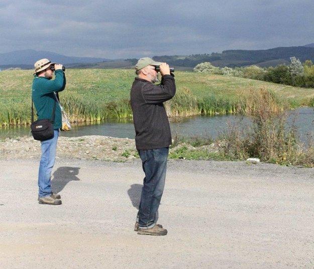 Ornitológovia sledujú migráciu vtáctva aj na hornej Nitre.