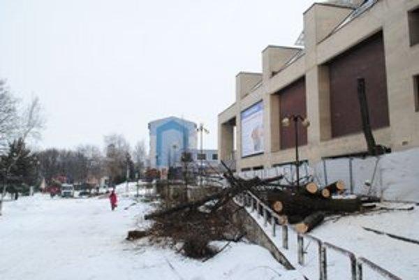 Po nedávnom výrube v centre mesta sa bude rúbať aj na popradských sídliskách.