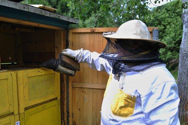 Skúsený včelár spod Tatier predpokladá asi o tretinu menšiu úrodu medu.