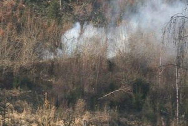 Munícia explodovala v lesoch pri Ihľanoch.