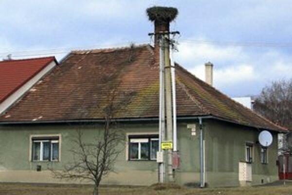 Problémové hniezdo vo Veľkej.