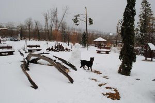 Snehová nádielka v Dolnom Smokovci. Potešila nielen deti a lyžiarov, ale aj psa Tedyho.