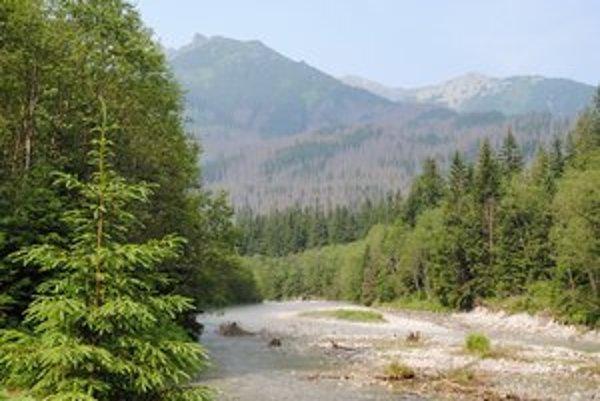 Panenská príroda hraničnej Bielovodskej doliny. Členitý reliéf a dĺžka až 10 kilometrov spôsobuje problémy s telefónnym signálom, ktorý je často nedostupný.