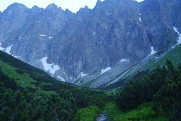 Javorová dolina tvorí spolu so susednou Bielovodskou komplex dvoch veľkých severných tatranských dolín na slovenskom území. Z pohľadu turistov sú podstatne menej navštevované než južné, je v nich viacero vzácnych území a prírodných výtvorov, ktoré väčšino